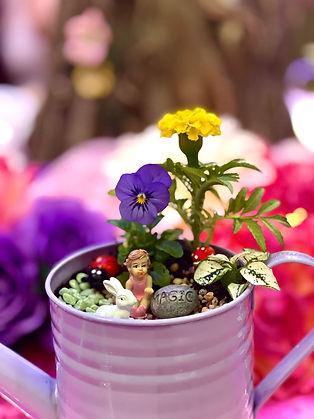 Fairy Flower Garden
