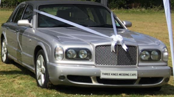 Arnage Close Up Bow.png