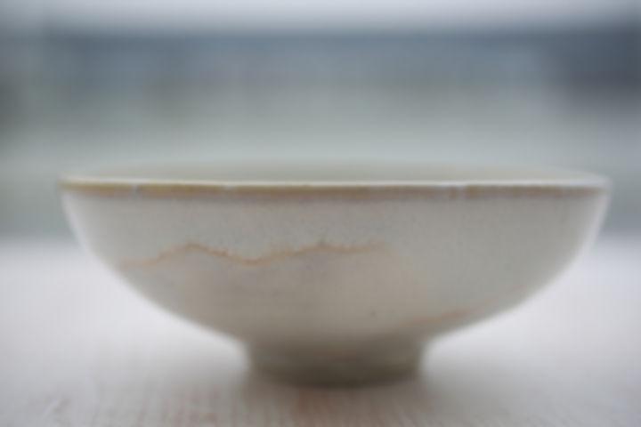 karinegoldberg_ceramic_artdelatable_assi