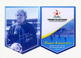 Турнир им. В.Н. Виноградова
