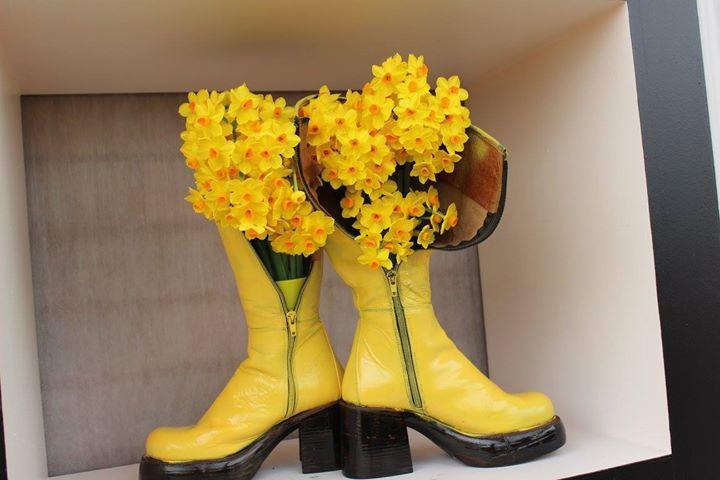 Yellow Daffodils in Boats