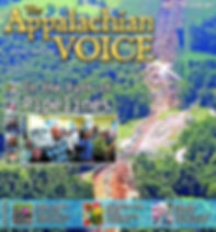 App Voices FebMarch2019 cover.jpg