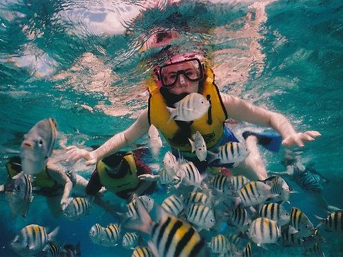 Corso base d'immersione in piscina
