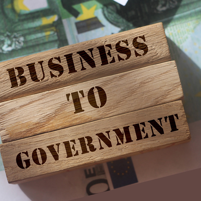 Government Contracting 101: Doing Business with the Government