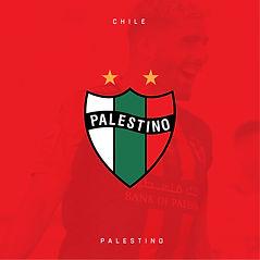Palestino 460x460.jpg