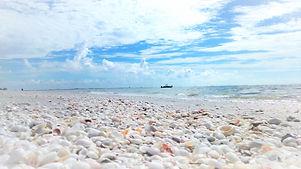 wix stones beach water.jpg