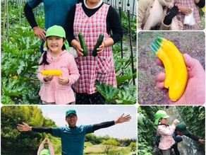 【5歳の好奇心✨】 人生初の取材🌽🍅ひらひら農園さんへ🌿