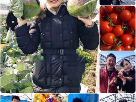 【 2020 射手矢農園 収穫祭 ✨🌿】 〜 今年も笑顔いっぱい!キャベツ畑へ 〜