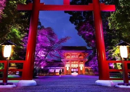 『下鴨神社で糺の森の光の祭』