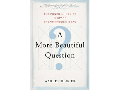 'A More Beautiful Question' Summary