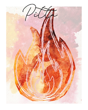 Pitta Cover.png