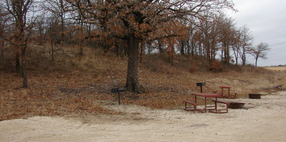 View from large cabin of fire pit and pi