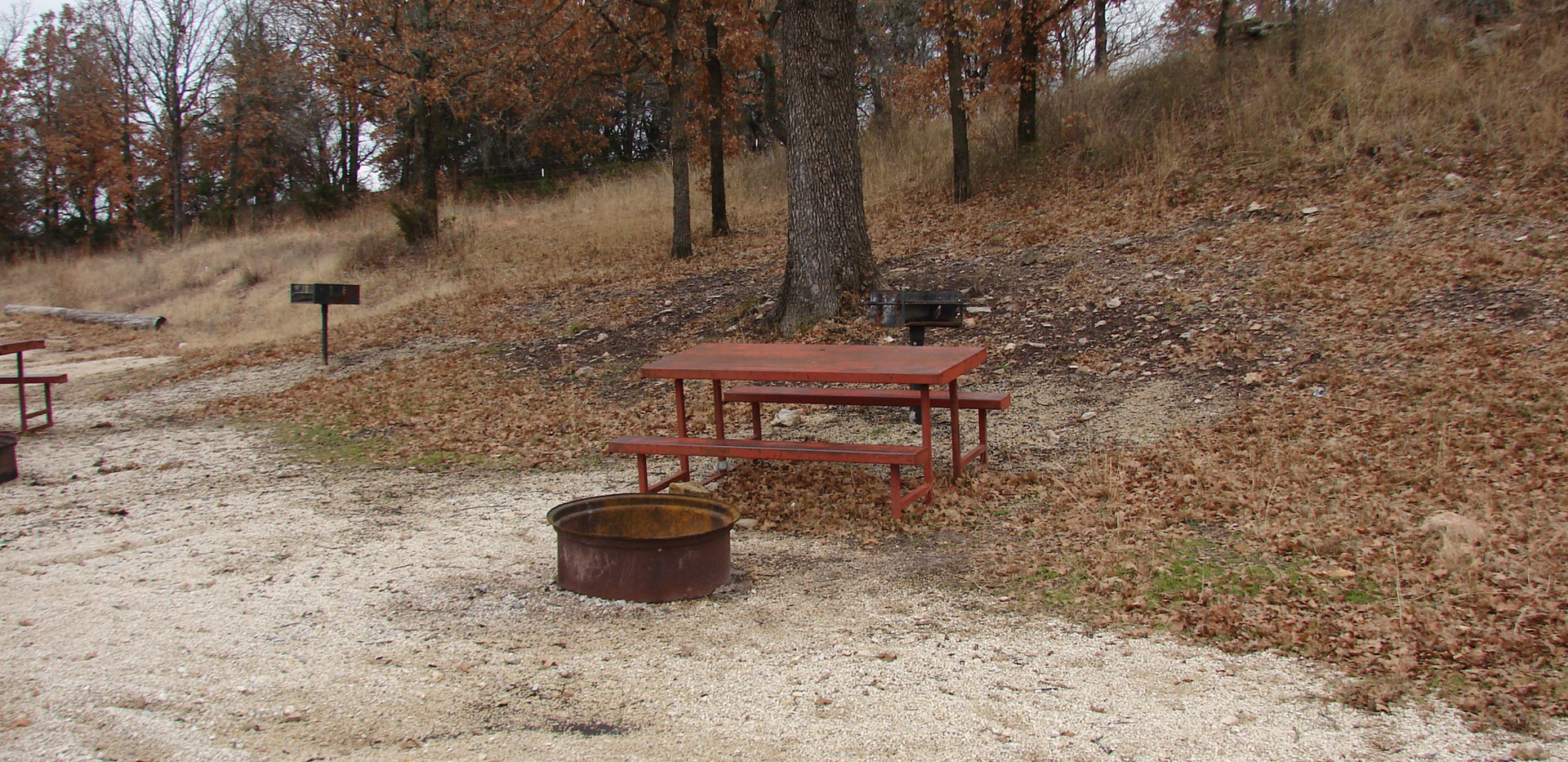 Small cabin view of fire ring and picnic