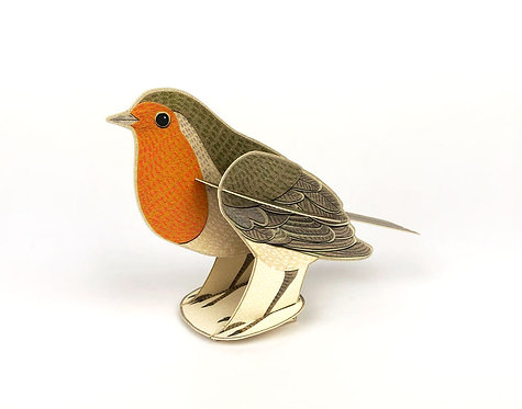 Pop out Robin card