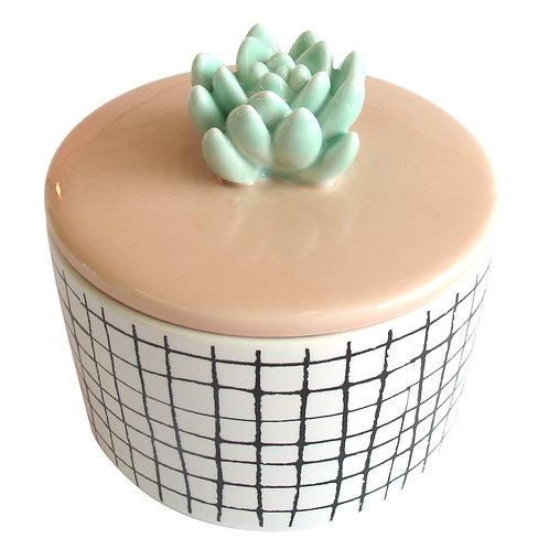 Urban Garden Cactus Jar