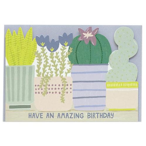 Happy Birthday Card - Succulents
