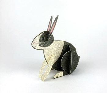 Pop out Rabbit Card
