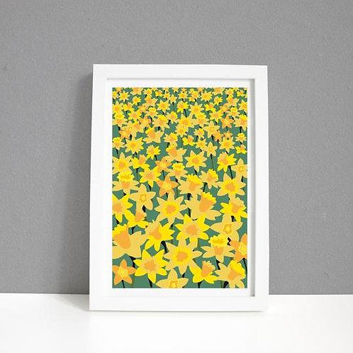 Daffodil Field Framed Print