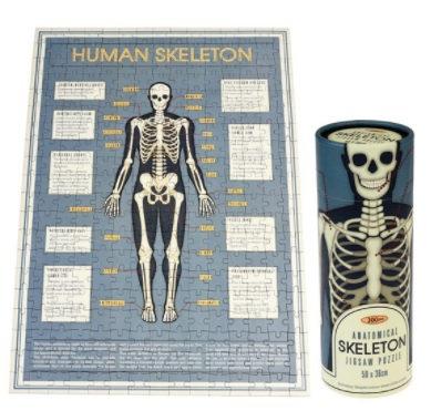 Human Skeleton Puzzle