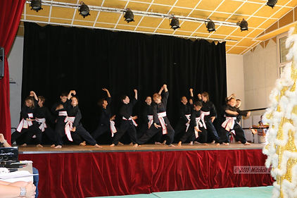 Kung fu 1.jpg