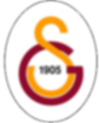 Galatasaray_Sports_Club_Logo.png