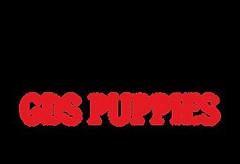 Transparent Logo, Black dog, red GDS Ouppies