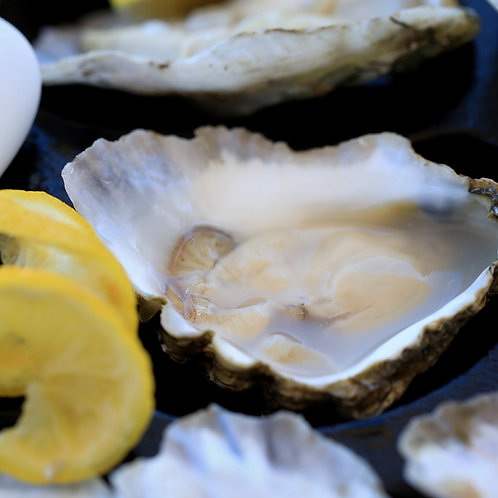 First Kiss Oysters