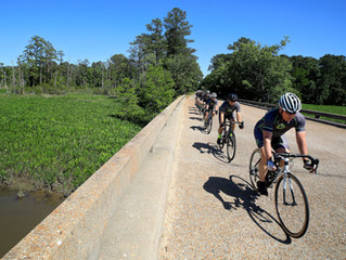 Cycling's Hincapies on Board for Williamsburg Winery's First-Ever Tour de Virginia