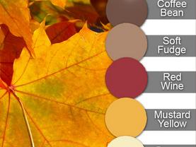 Multicolor Monday - ❤️ November 16, 2020 ❤️