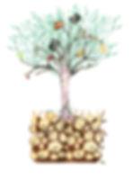Aprender Cuenta, Educacion financiera niños, Emprendimiento niños,talento emprendedor niños, arbol de los tesoros Aprender Cuenta, Juana Leon Alamo