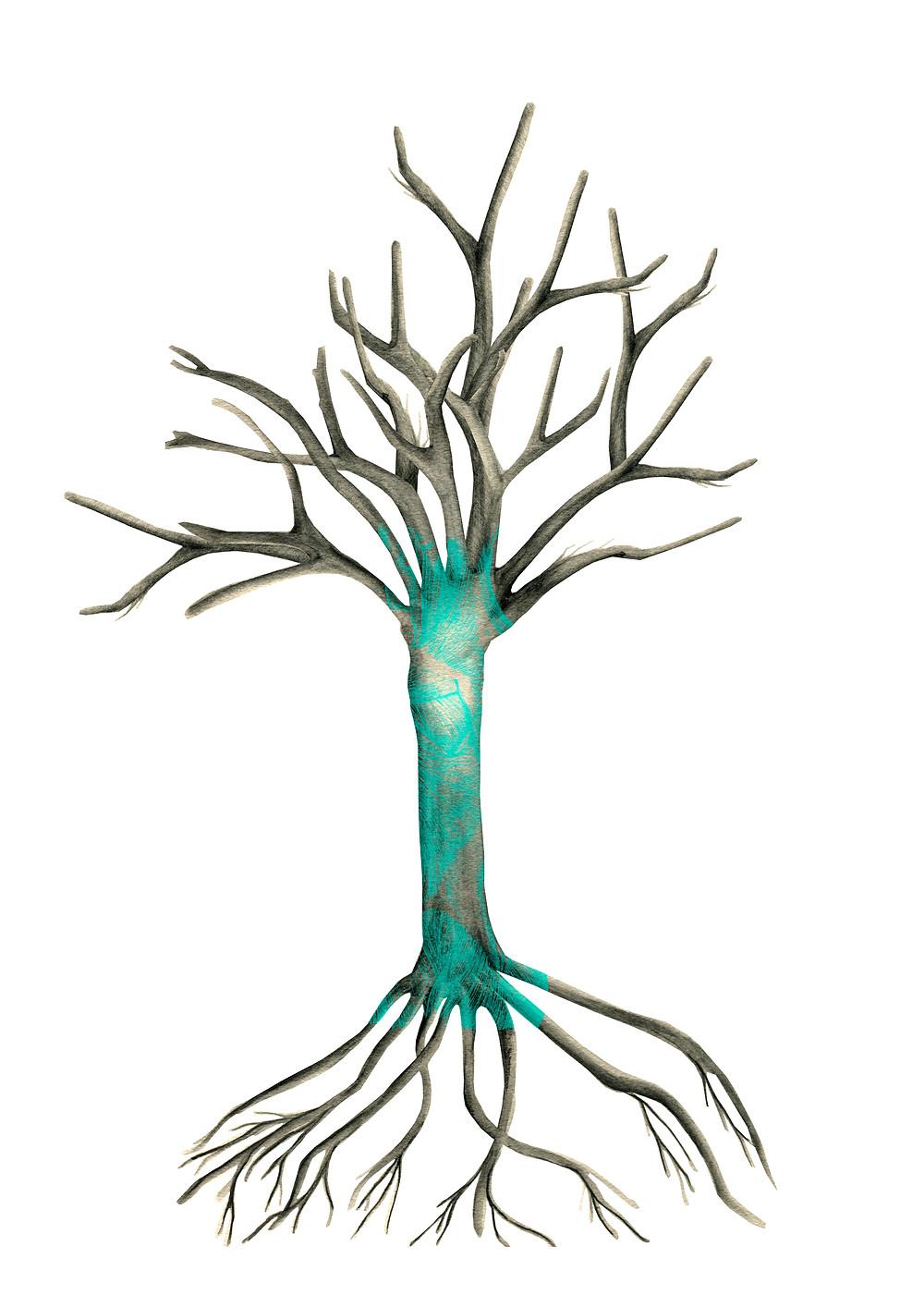 árbol Aprender Cuenta