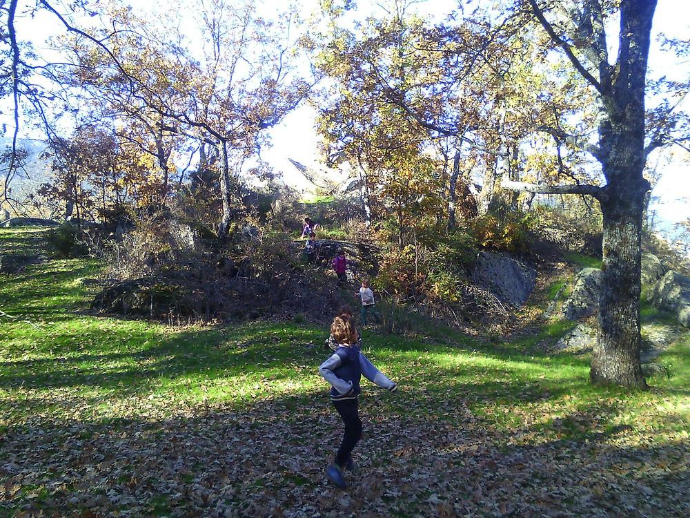 niños jugando campo
