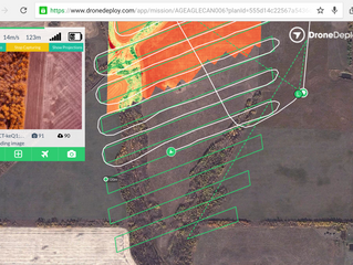 NDVI stitching on-the-fly