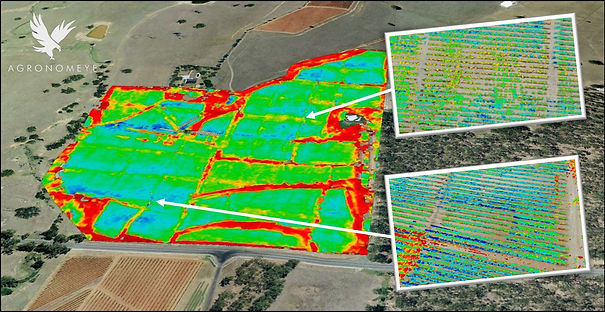 Multispectral for Wine Quality | LandView Drones