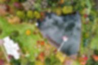 Lake%202_edited.jpg