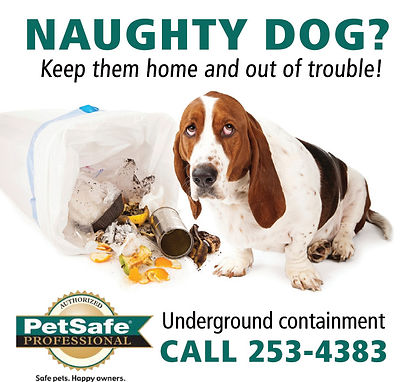 Naughty Dog? Keep them out of trouble! Call 253-4383