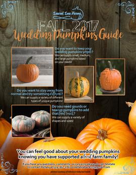 Wedding Pumpkin Guide