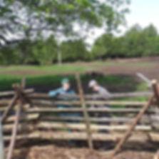 Farm_2019.jpg