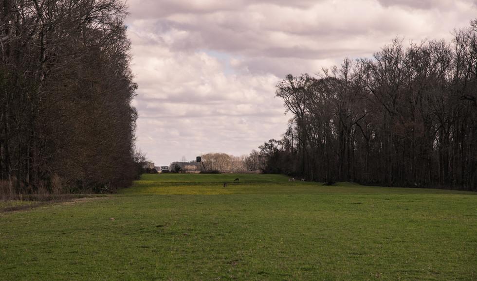 Green Briar Ranch-189.jpg