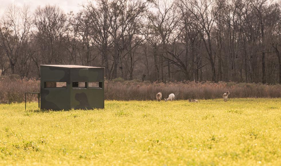 Green Briar Ranch-209.jpg