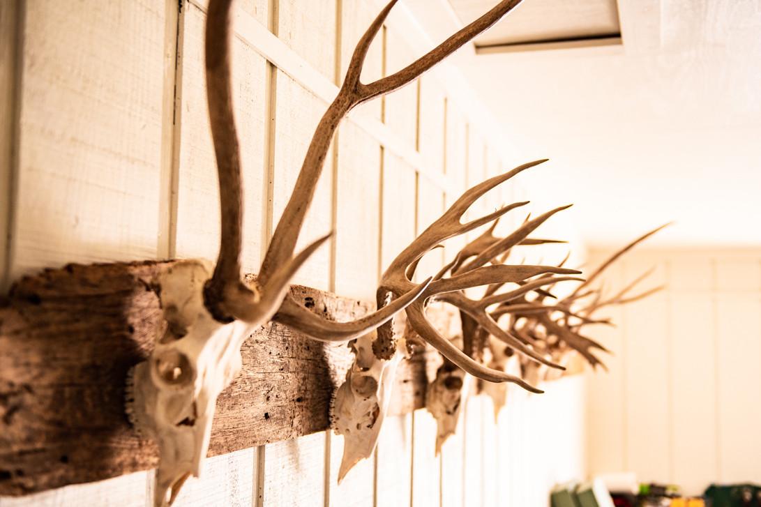Green Briar Ranch-65.jpg