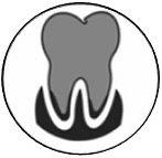 dental8.jpg