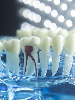 dental_bg1.jpg