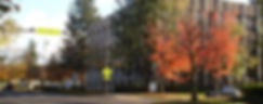 chestnut_building_from_chestnut_view.jpg