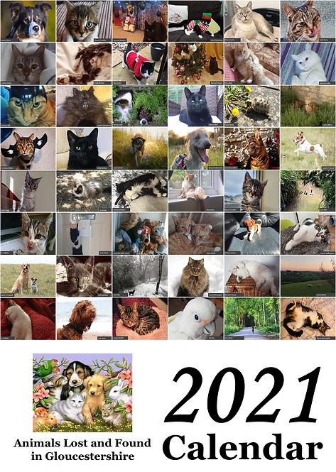 ALFIG Calendar 2021
