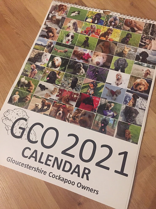 REDUCED DUE TO PRINTING Gloucestershire Cockapoo Owners 2021 Calendar