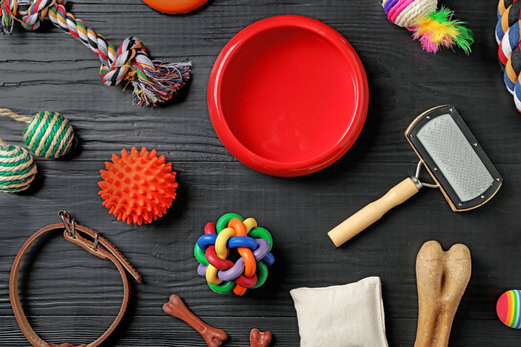 Flat lay composition with accessories fo