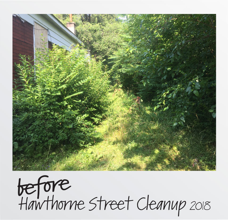 Before Hawthorne Alley.jpg