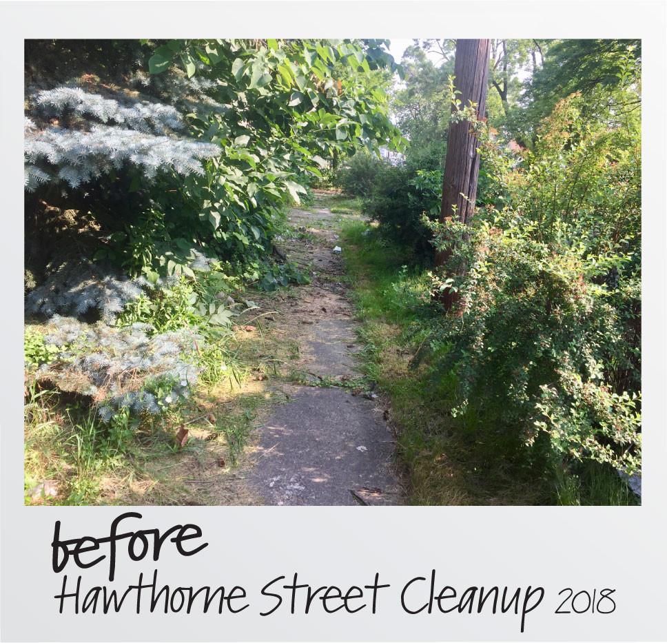 Before Sidewalk Hawthorne-01.jpg