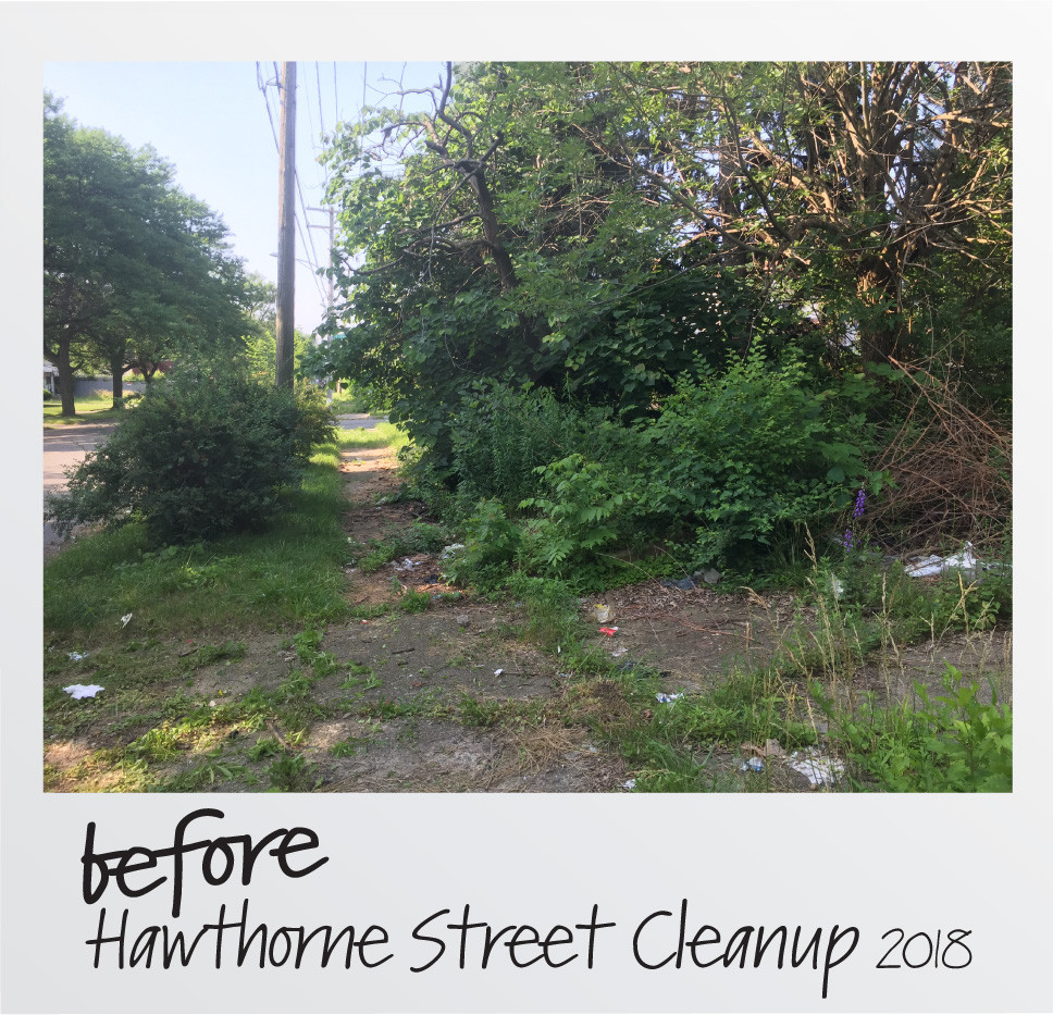 Before Hawthorne Front Yard-01.jpg
